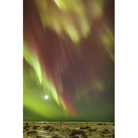 Posterazzi Northern Lights And Moon In The Sky Above The Snow Covered Mudflats Of Knik Arm Winter Cook Inlet Southcentral Alaska Usa Canvas Art   Kevin Smith  Design Pics  24 X 38