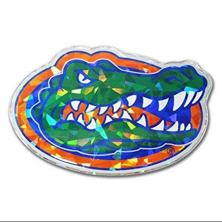 Florida Gators Color NCAA Reflective 3D Decal Domed Sticker - Florida Gators Colors