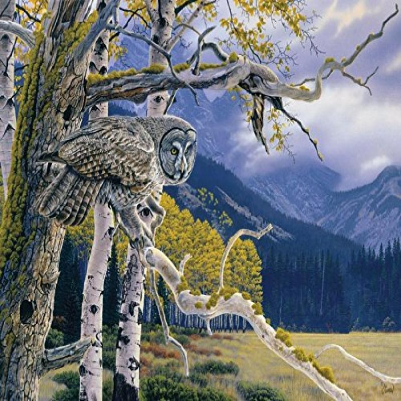 Cobble Hill Great Grey Owl 1000 Piece Jigsaw Puzzle