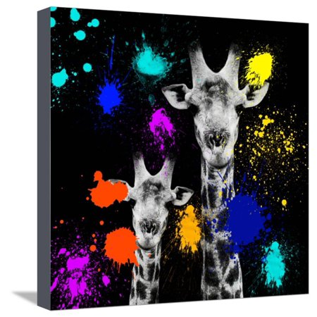 Safari Colors Pop Collection - Giraffes Portrait VI Stretched Canvas Print Wall Art By Philippe Hugonnard Custom Pop Art Canvas