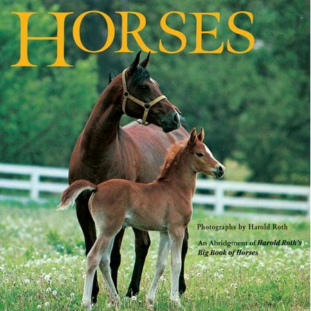 Horses : An Abridgement of Harold Roth