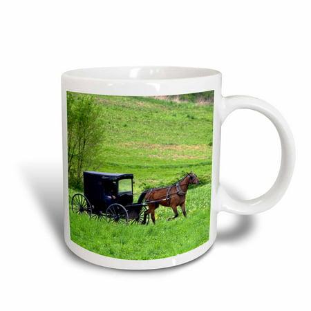 3dRose Amish farm with horse buggy near Berlin, Ohio - US36 DFR0018 - David R. Frazier, Ceramic Mug, 11-ounce