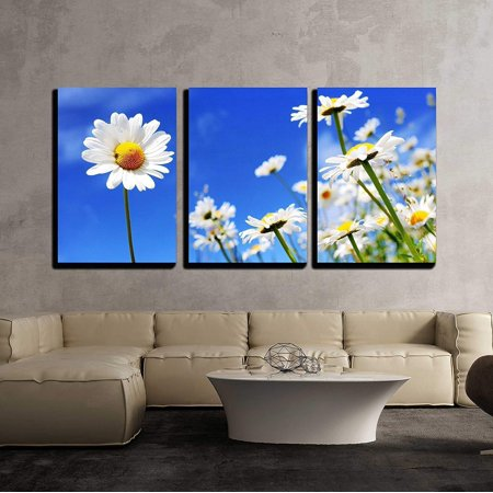 - wall26 - 3 Piece Canvas Wall Art - Summer Field with White Daisies on Blue Sky - Modern Home Decor Stretched and Framed Ready to Hang - 16