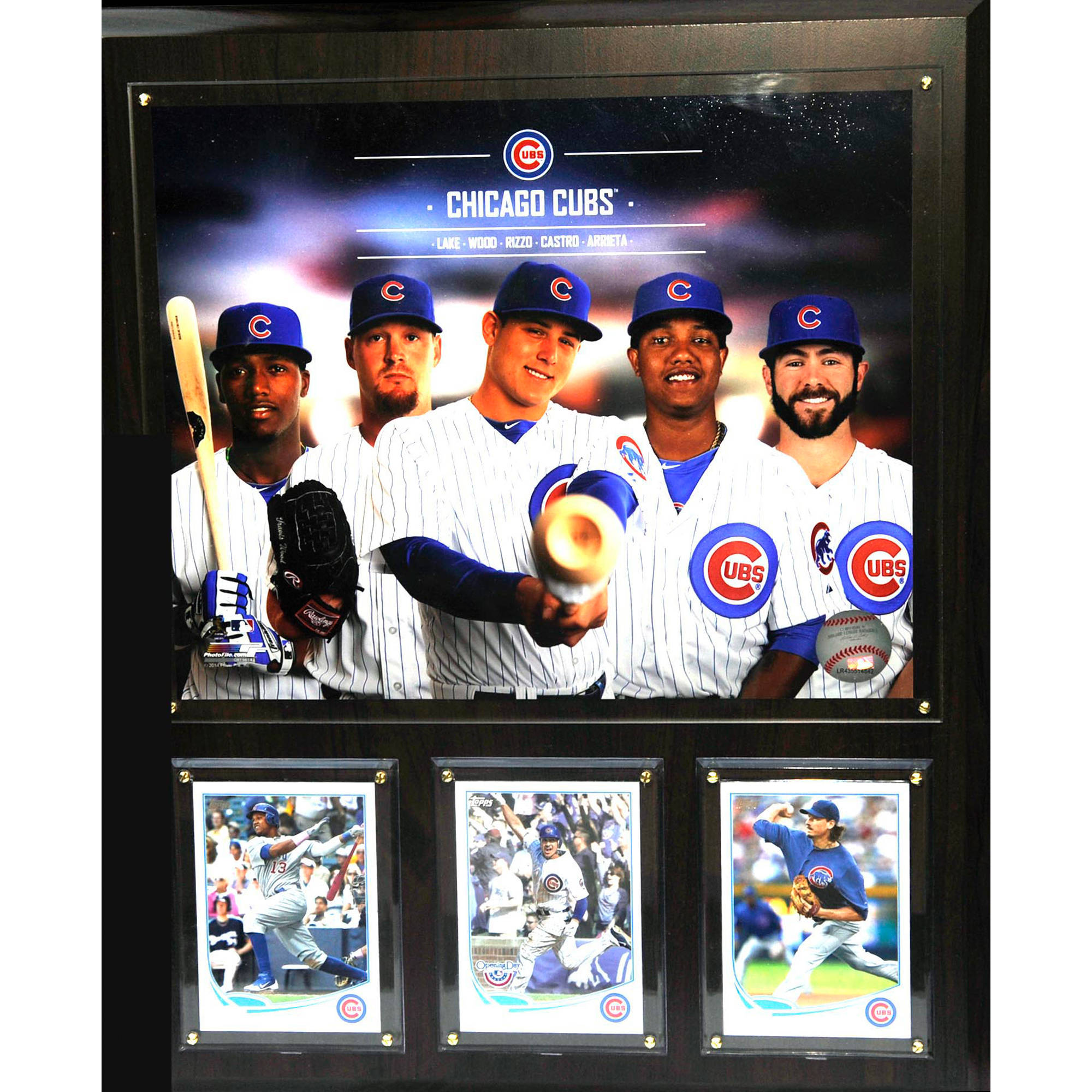 C&I Collectables MLB Chicago Cubs 2014 Team Plaque