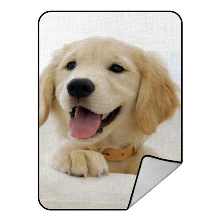 Labrador Retriever Accessories (ZKGK Labrador Retriever Blanket Crystal Velvet Front and Lambswool Sherpa Fleece Back Throw Blanket 58x80inches)