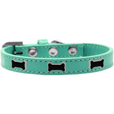 Aqua Show Dog Collar (Black Bone Widget Dog Collar Aqua Size 16)