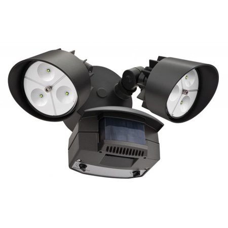 Lithonia Lighting 2-Light LED Flood Light