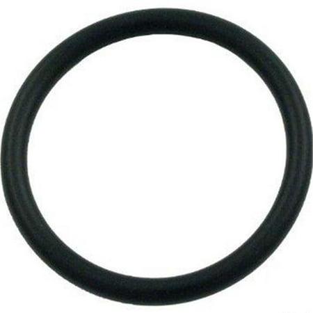 Piston O-Ring - Large - image 1 of 1
