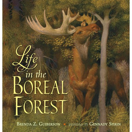 Forest Life - Life in the Boreal Forest