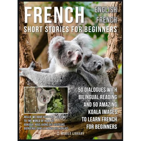 French Short Stories for Beginners - English French -