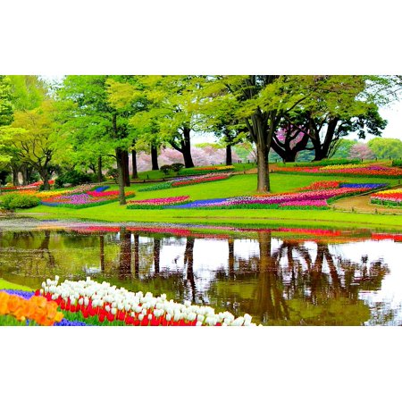Framed Art for Your Wall Blossoms Plants Garden Landscape Flowers Lake 10x13 Frame