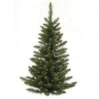 2 ft. Camdon Fir Wall Tree 57T