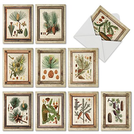M6462ocb pining for you 10 assorted all occasions greeting cards m6462ocb pining for you 10 assorted all occasions greeting cards featuring fir and pine m4hsunfo