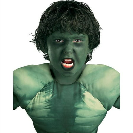 The Incredible Hulk Costume (The Incredible Hulk Costume)