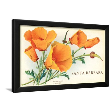 Restaurant Santa Barbara California Art (California Poppy, Santa Barbara, California Framed Print Wall)