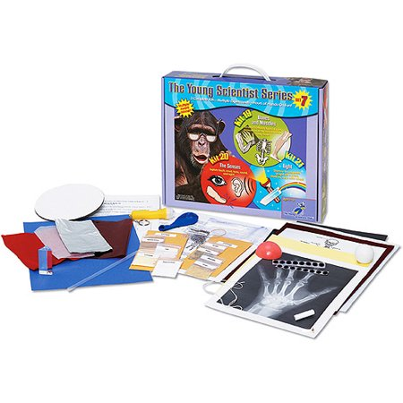 Young Scientist Series   Set 7  Bones And Muscles  Kit 19    The Senses  Kit 20    Light  Kit 21