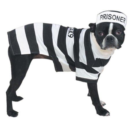 Prison Costumes For Dogs Dress Your Pup Like a Prisoner in Stripes Choose Size (xLarge) Choosing Dog Clothes