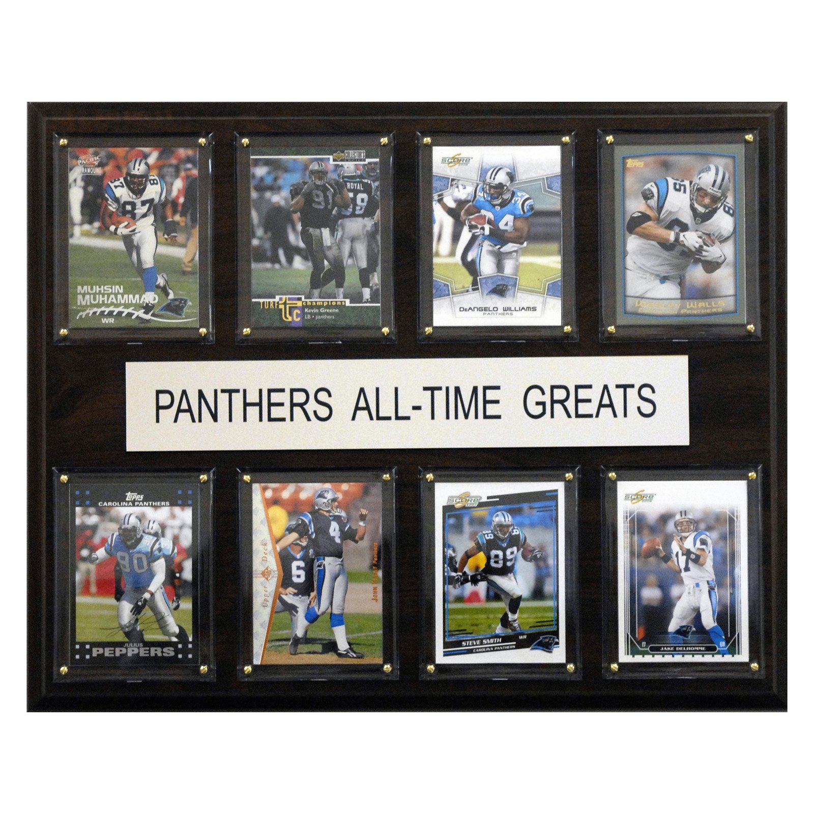 NFL 12 x 15 in. Carolina Panthers All-Time Greats Plaque