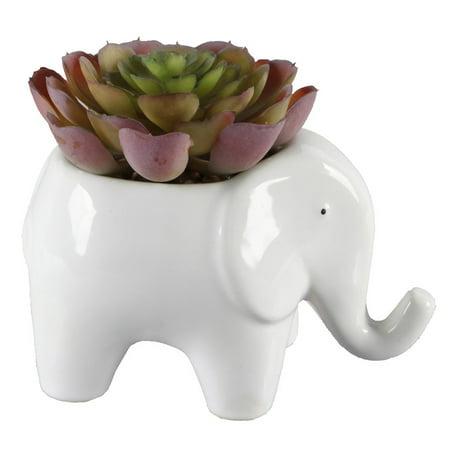 Mainstays Ceramic Elephant Planter - Elephant Decor