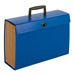 Office Depot Multi-Tab Expanding Carry File, 19-Pockets, Blue, 768435OD768435OD