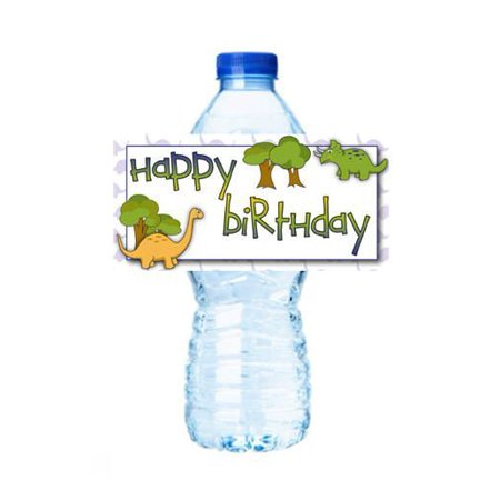 Dinosaur Party Party Decorations 15ct Water Bottle Sticker Labels](Water Bottle Label Size)