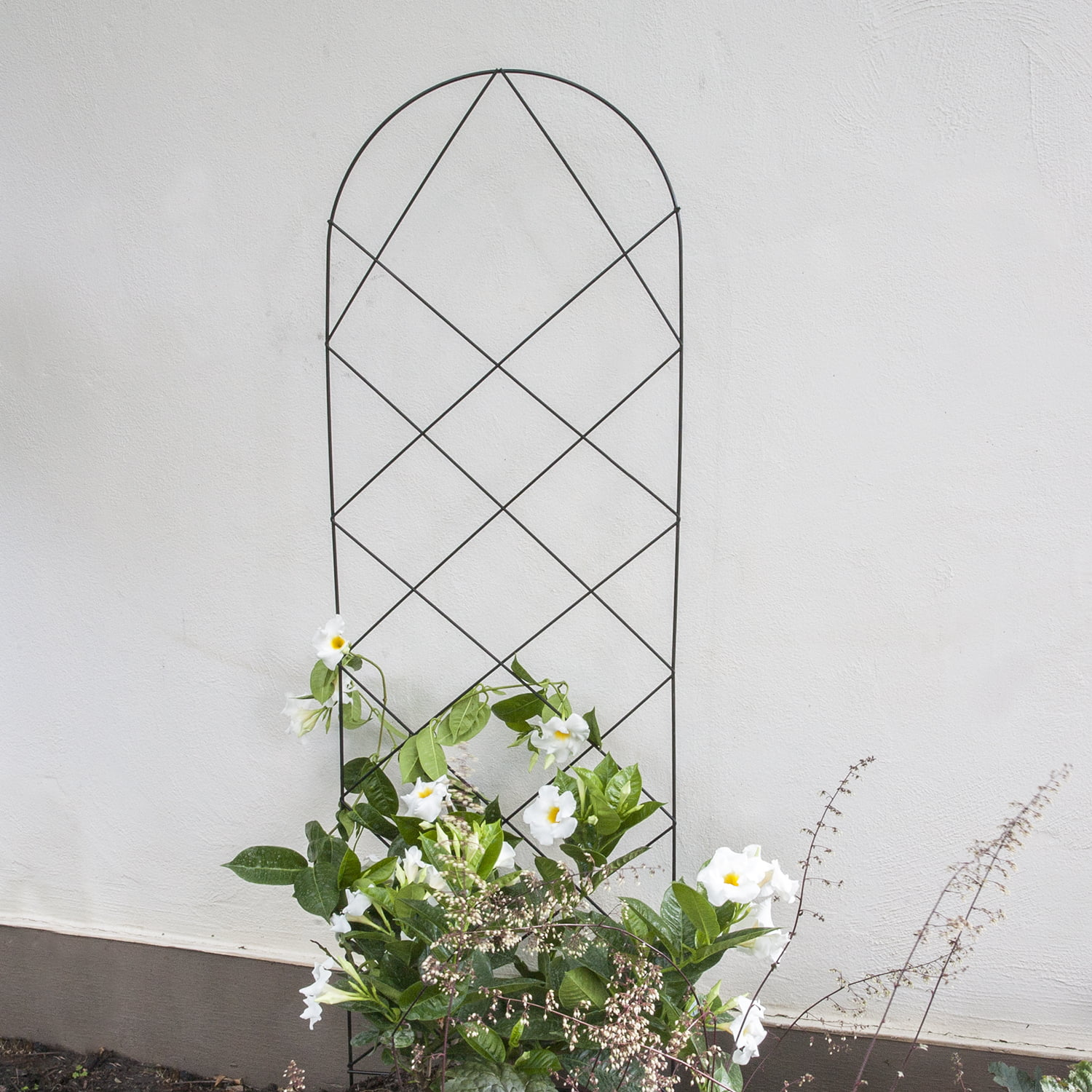 60 Inch Lattice Trellis by Generic
