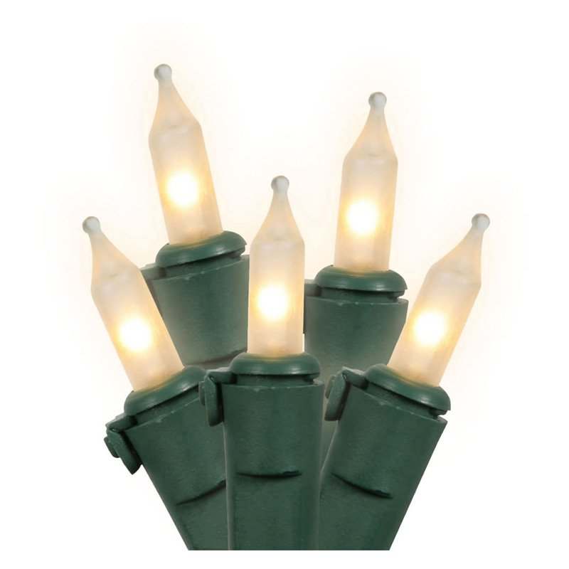 Vickerman 100 Light Set