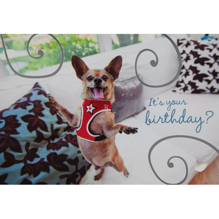 Chihuahua Happy Dance Birthday Greeting Card