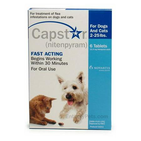 Capstar Flea Treatment Dog Flea & Tick Care ()