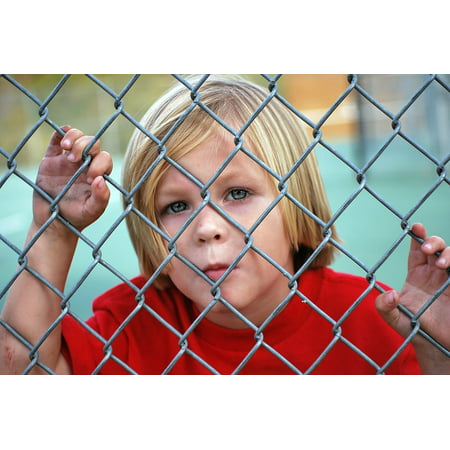 LAMINATED POSTER Fence Chain Link Child Boy Looking Young Male Poster Print 24 x 36 (Boys Link)