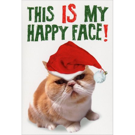 Nobleworks My Happy Face Funny / Humorous Cat Themed Christmas Card ()