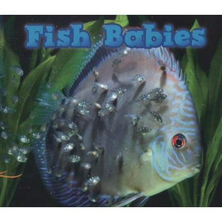 Fish Babies