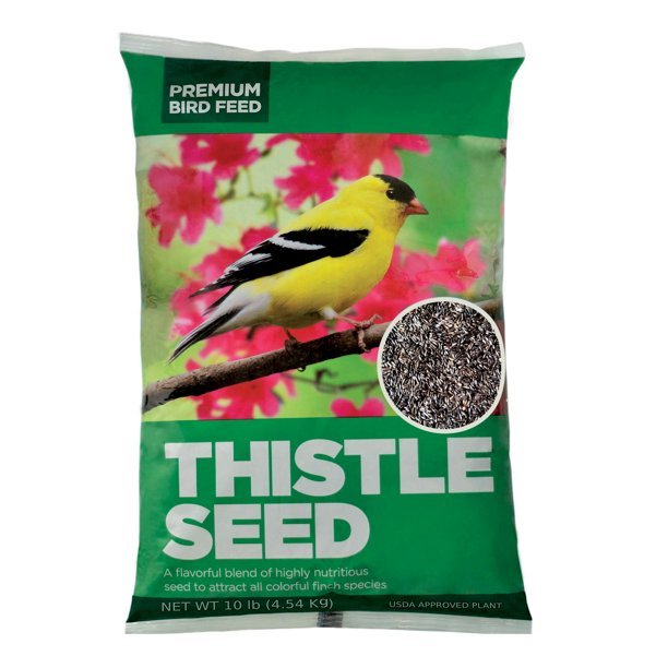 Premium Sterilized Natural Black Thistle Seed,Wild Bird Feed 10LB
