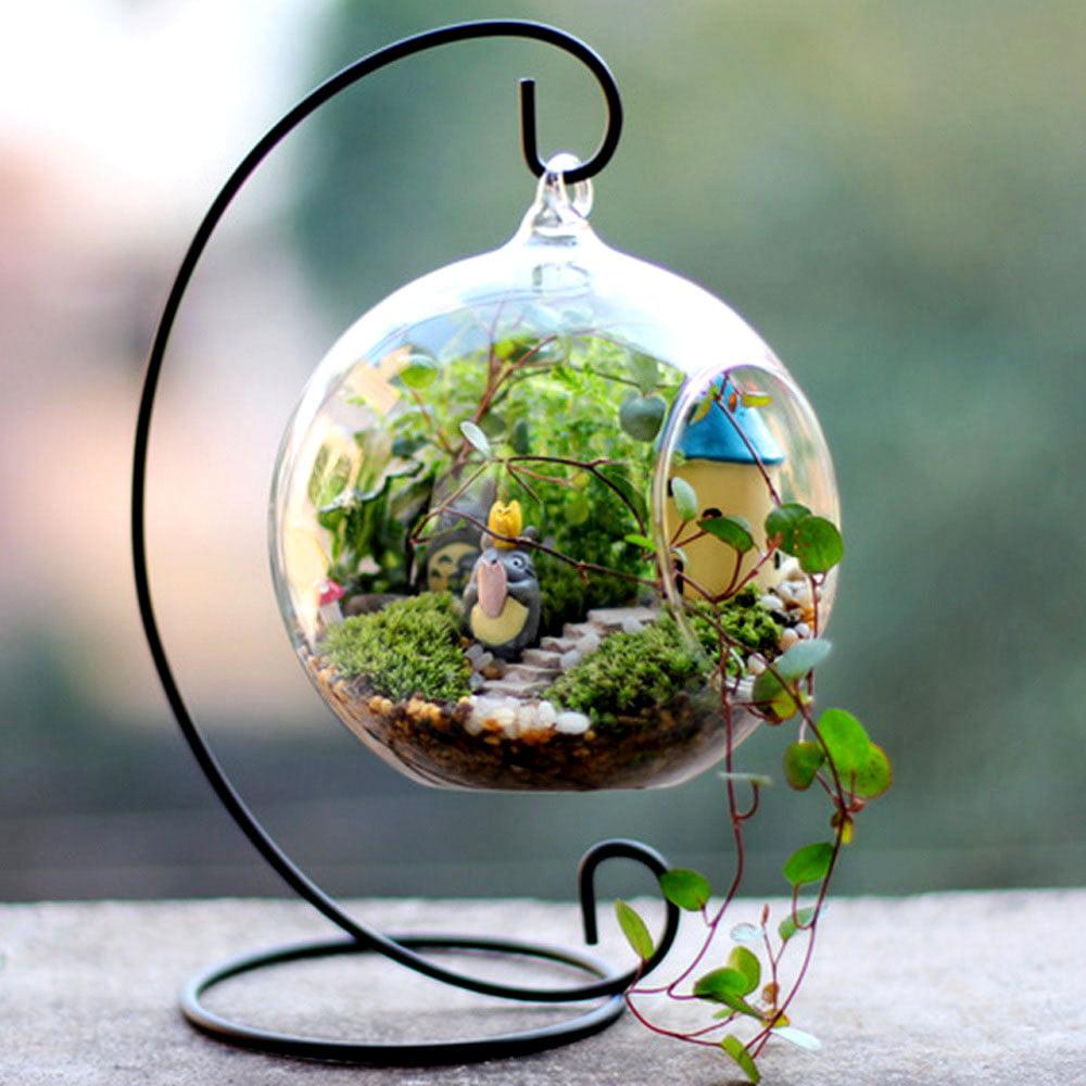 Efavormart 4 Pcs Graceful Globe Glass Terrarium Decorative Clear