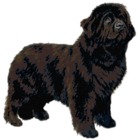 Newfoundland Dog Counted Cross Stitch - Halloween Cross Stitch Patterns Online