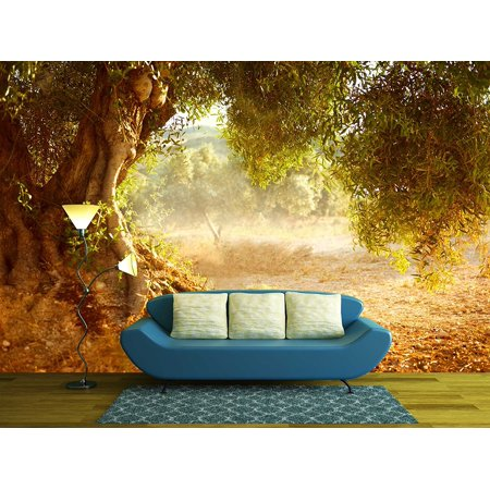 - wall26 - Old Olive Tree - Removable Wall Mural | Self-adhesive Large Wallpaper - 66x96 inches