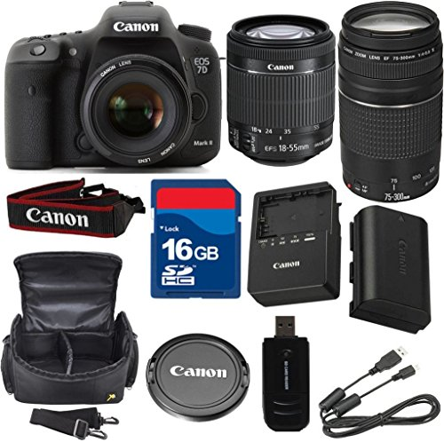 Canon 7D Mark II Digital SLR Camera with EF-S 18-55mm f/3.5-5.6 IS STM Lens + 75-300mm III Zoom + High Speed 16GB Memory Card + High Speed Reader + 6pc Bundle - International Version