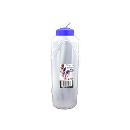 Bulk Buys HL166-48 Water Bottle With Straw, 25 - Sports Bottles In Bulk