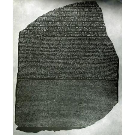 Rosetta Stone Stretched Canvas -  (18 x 24)