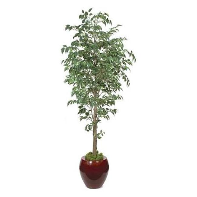 Autograph Foliages P-70593 - 7 Foot Benjamina Ficus Tree - Green