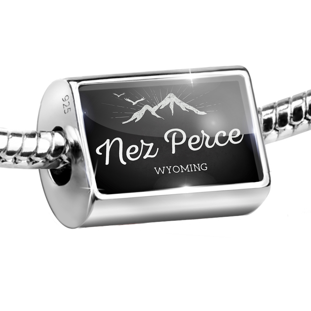 Bead Mountains chalkboard Nez Perce - Wyoming Charm Fits All European Bracelets
