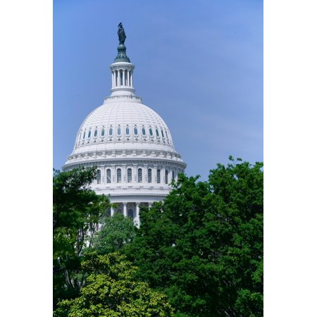 Trees in spring and US Capitol Dome with Statue of Freedom statue overlooking Washington DC Poster Print by Panoramic Images (36 x 24)