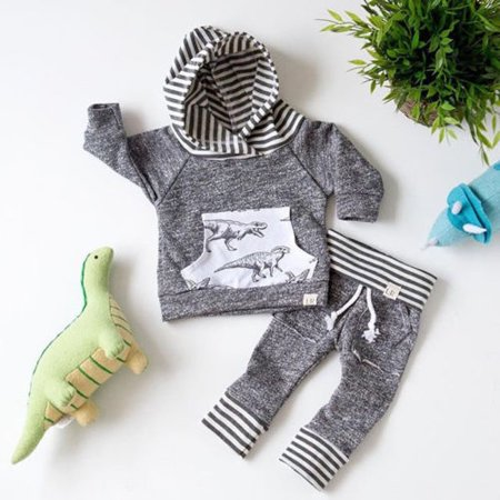 Toddler Infant Baby Boys Dinosaur Long Sleeve Hoodie Tops Sweatsuit Pants Outfit Set](Dinosaur Outfits)
