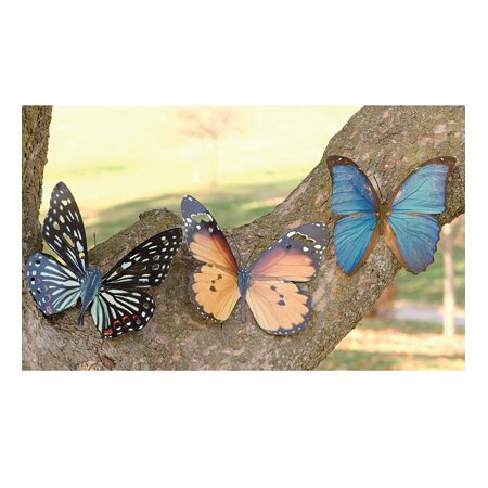 Tropical Butterfly Metal Wall Art / Wall Sculpture
