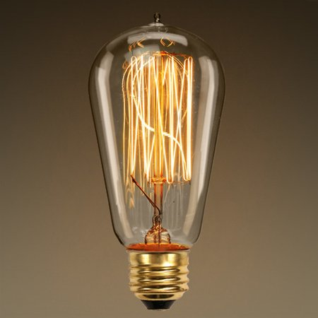 60 Watt Vintage Antique Light Bulb Edison Style Squirrel Cage Filament 4 75 In