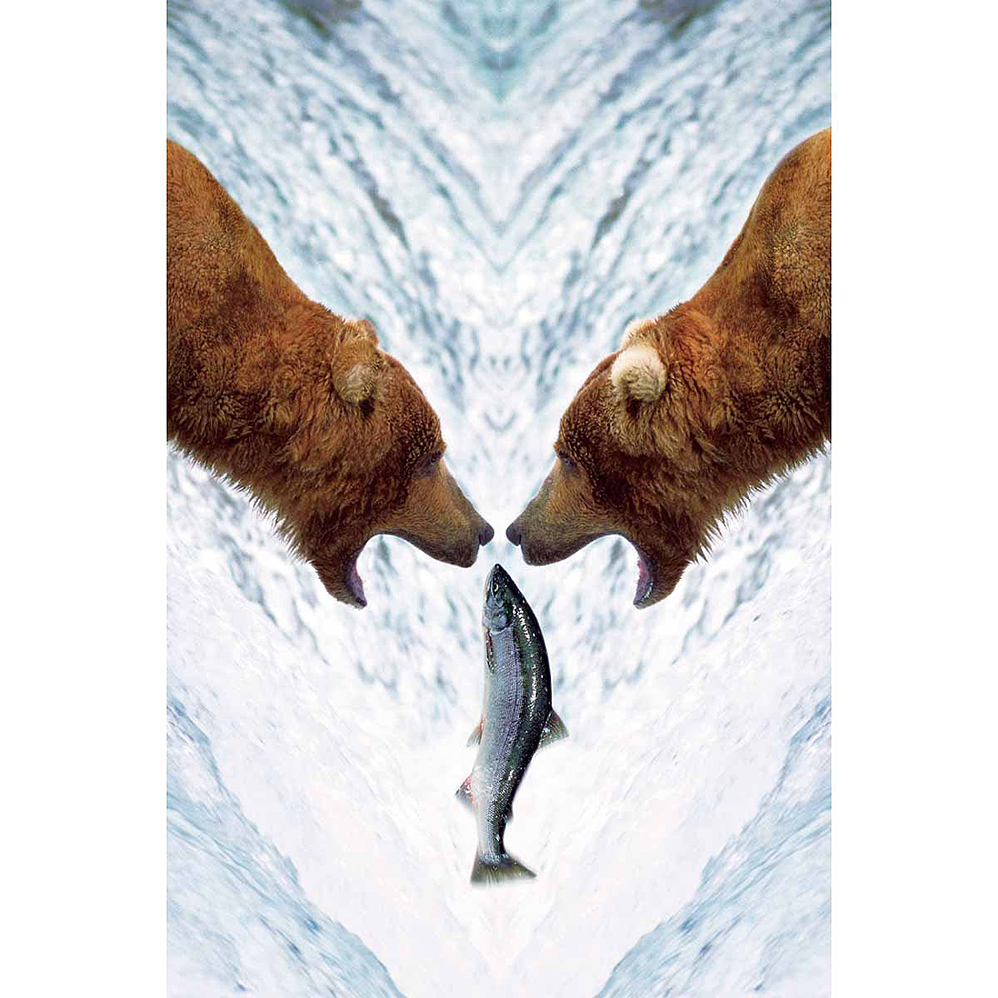 Two Bears One Fish Photography Art
