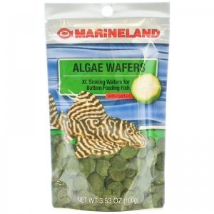 Marineland Algae Wafer XL Bottom Feeder Fish Food, 3.53-oz (Tropical Sinking Algae Wafers)