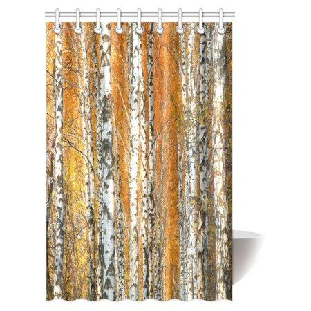 MYPOP Farm House Decor Shower Curtain, Autumn Birch Tree Forest ...