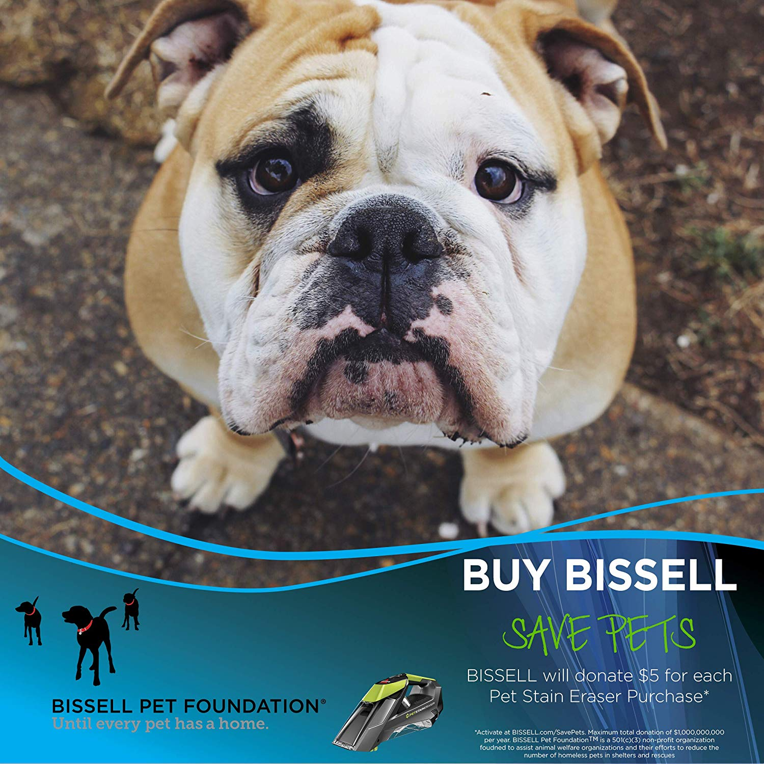 Bissell Pet Stain Eraser Advanced Cordless Portable Spot And Carpet