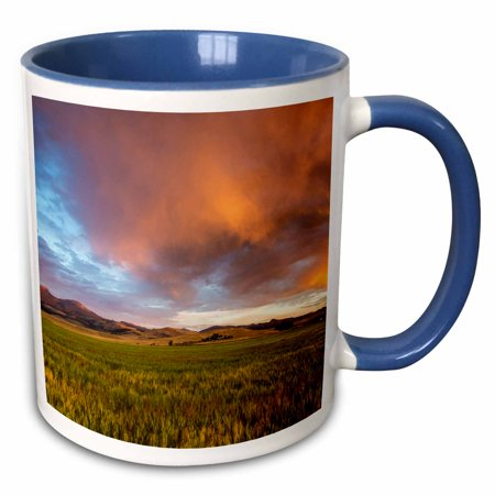 3dRose Wheat field, Tobacco Root Mountains, Montana, USA - US27 CHA2859 - Chuck Haney - Two Tone Blue Mug, 11-ounce